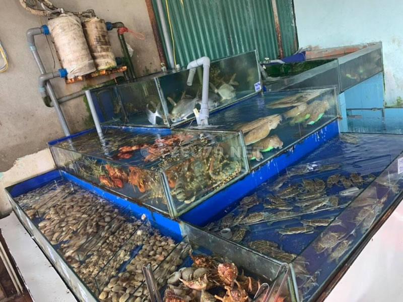Tiết lộ những các quán hải sản ngon nhất Nha Trang 2020